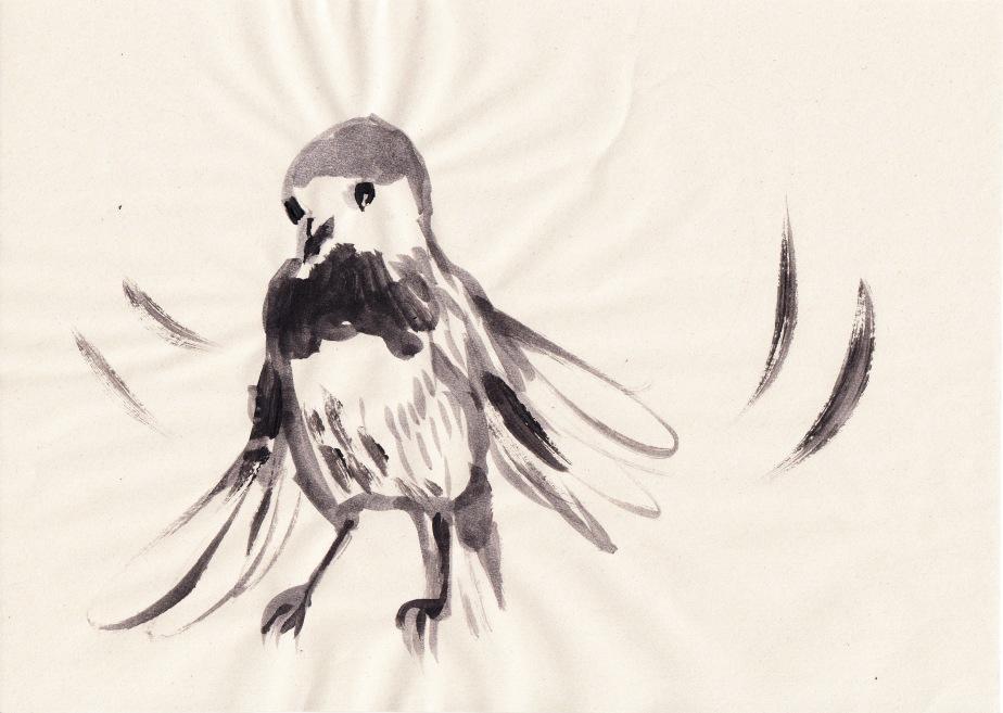 Birdies_0001