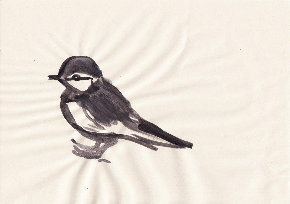 Birdies_0002