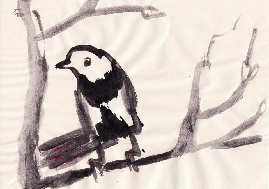 Birdies_0003